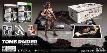 Tomb Raider collector 1