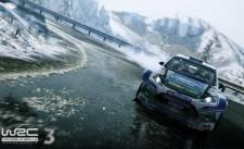 WRC-3_screenshot-2