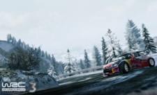 WRC-3_screenshot-3