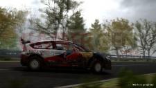WRC-ps3-image (16)